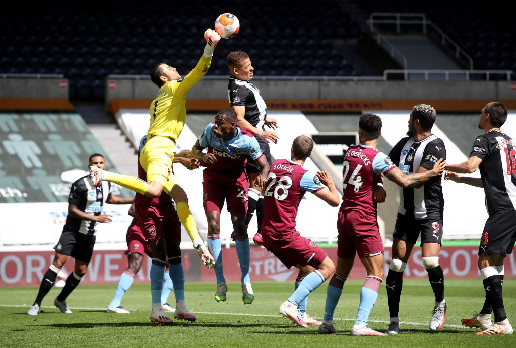 Whelan urges Newcastle United to offer Gayle a new contract (Gayle is in action in the picture)